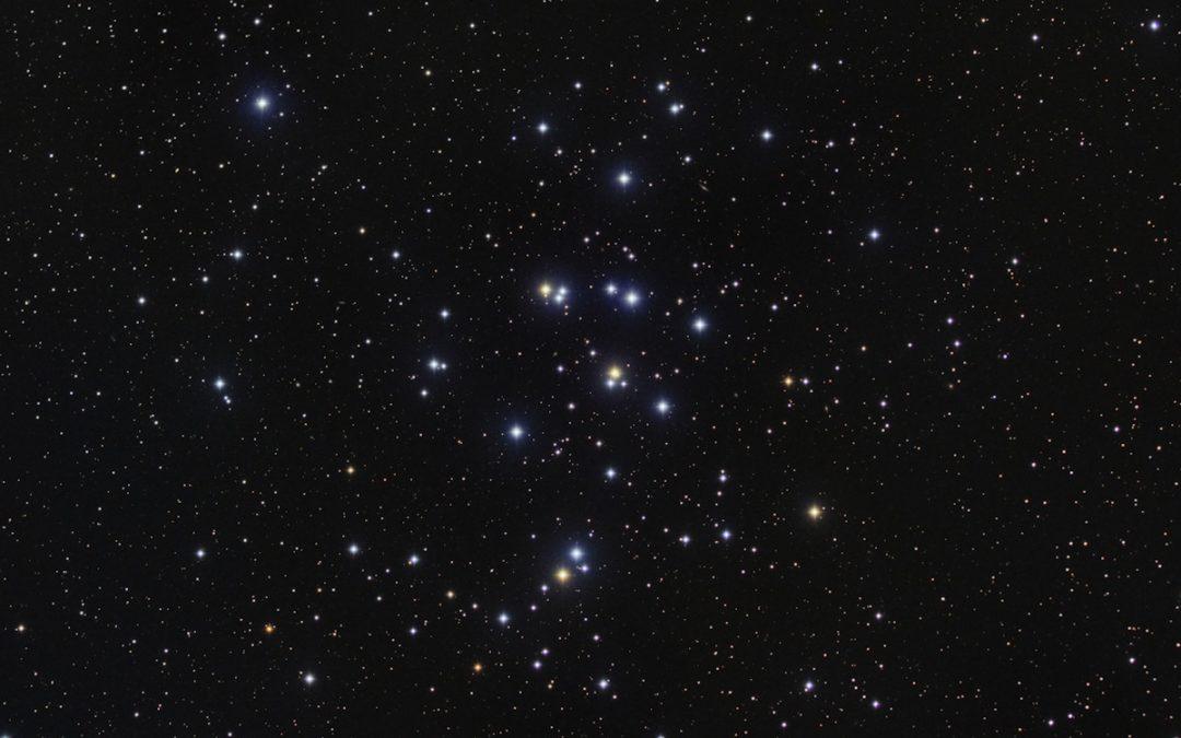 M44 (Presepe)