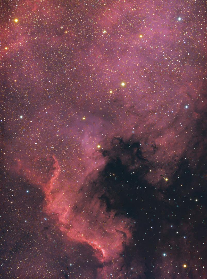 NGC7000: nebulosa Nord America